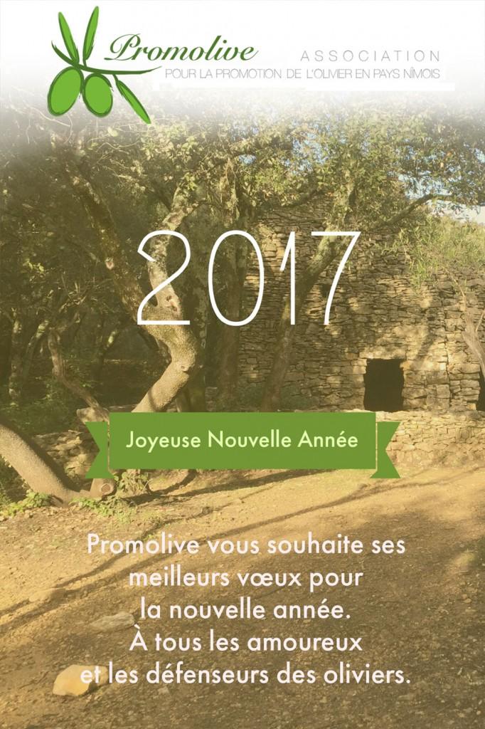 promolive-Voeux2017-web