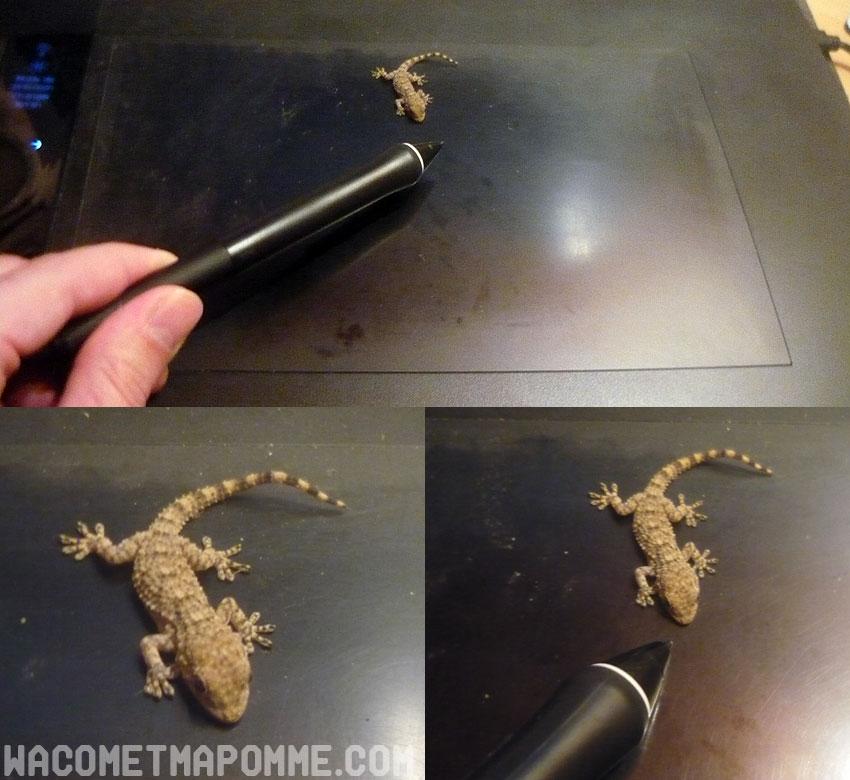 gecko_vs_grippen5