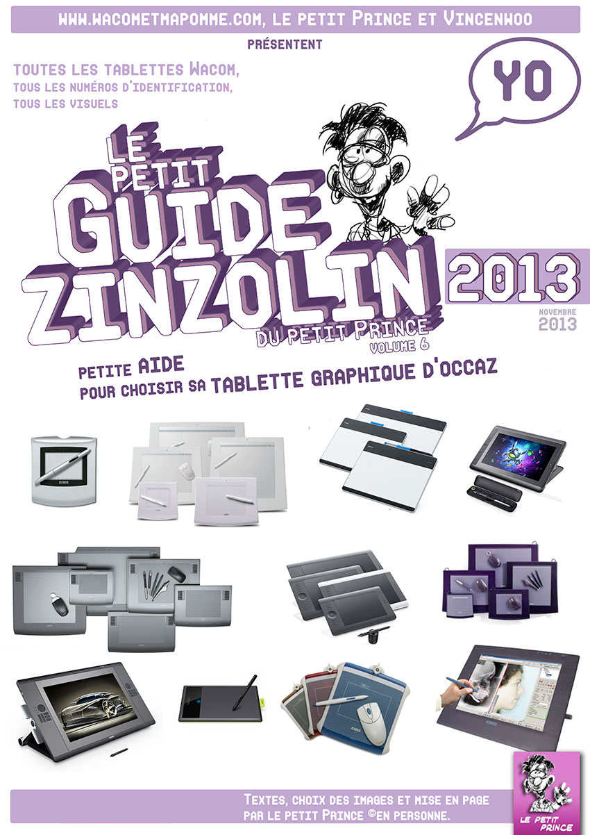 guidezinzolin2013