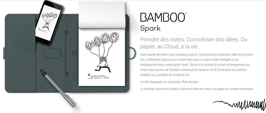 BambooSpark-intro